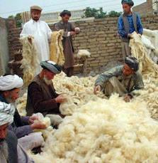 wool-to-yarn.jpg