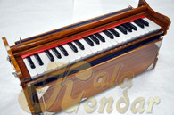 Paul & Company Harmonium > Bina Harmonium > Monoj Kumar Sardar
