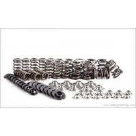 Integrated Engineering 1.8T 20V Valve Spring/Retainer Kit