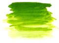Chroma Archival Oil Permanent Green Light 40ml