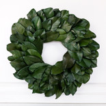 "20.5"" wreath preserved (MAGNOLIA) green (Indoor Use Only)"