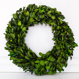 "20.5"" wreath preserved (LARGE BOXWOOD LEAF) green (Indoor Use Only)"