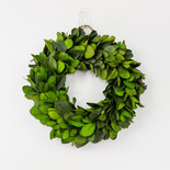 "10.5"" wreath preserved (LARGE BOXWOOD LEAF) green"