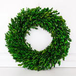 "21"" wreath preserved (BOXWOOD) green (Indoor Use Only)"