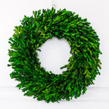 "10.5"" wreath preserved (BOXWOOD) green"