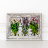 "7.5"" x 10"" x 2.5"" frame preserved (FLOWER BUNDLE) multicolor (Indoor Use Only)"