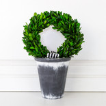 "8.25"" x 11.5"" x 8.25"" wreath on pot (BOXWOOD) green"