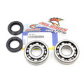 Crank Bearing & Seal Kit 83-04 KX500