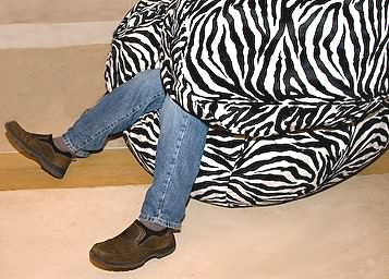 Hungry Zebra Bean Bag