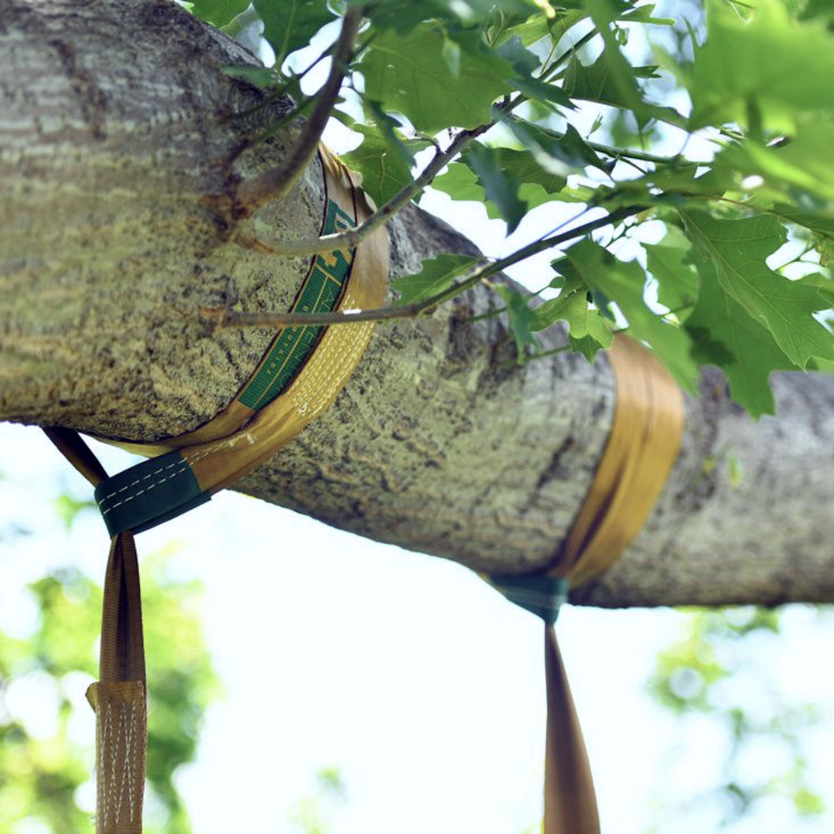 Tree Swing STRAP ONLY by SkyBound