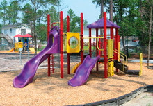 Alex Play Structure