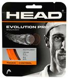 Head Evolution Pro 16 1.30mm Squash Set