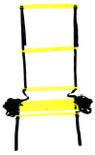 Pro's Pro Stepping Training Ladder