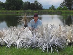 Loose Cradle Hair for fish habitat by Fishiding.com