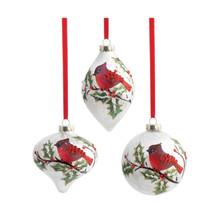 RAZ Cardinal & Holly Glass Ornament, 3 Assorted #3424509