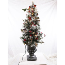 5ft Pre-Lit Flocked Fairfield Tree in Clear