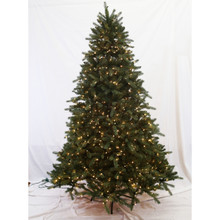 7.5ft Pre-Lit 'Real Feel' Grand Kensington Fir Tree in Clear
