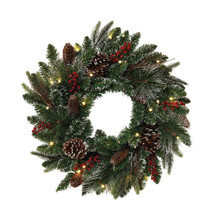 Frosted Lighted Holiday Wreath
