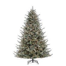 7.5ft Natural Cut Lightly Flocked Olympia Fir with Clear Lights