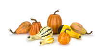 Set of 8 Decorative Harvest Pumpkin and Gourd