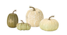 Set of 4 White and Green Decorative Pumpkins