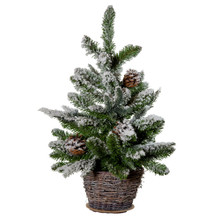 The 24-in flocked with pinecones tree from Kurt Adler captures the Christmas charm in a basket. The green tree is adorned with pinecones and coated with white frost and housed in a weaved basket.