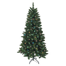 Don't have enough time to decorate your Christmas tree this year? That's okay – with this Kurt Adler 6-ft Pre-Lit Multi LED Green Pine Tree, you won't need to worry about putting on the light sets! With 250 multi-Colored UL-approved LED lights, 618 tips, a 38-in girth, and a metal stand, this green pine tree is the perfect size for and addition to your holiday decoration. With a couple of ornaments and a treetop, the feel of Christmas will soon be here.