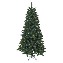Don't have enough time to decorate your Christmas tree this year? That's okay – with this Kurt Adler 6-ft Pre-Lit Green Pine Tree with MultiColored Lights, you won't need to worry about putting on the light sets! With 300 multiColored UL-approved lights, 618 tips, a 38-in girth, and a metal stand, this green pine tree is the perfect size for and addition to your holiday decoration. With a couple of ornaments and a treetop, the feel of Christmas will soon be here.