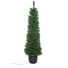 This 5-ft Pre-Lit Potted Tree from Kurt Adler adds a beautiful and festive touch to your holiday decoration. Its slim green design boasts 100 warm white LED lights, 286 tips, 236-in lead wire, an 18-in diameter and a UL plug. This is a classic addition to any home for the holidays!