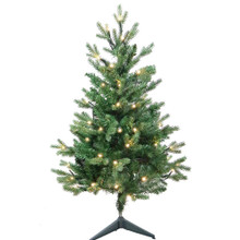 """This 3-ft Warm White LED Jackson Pine Tree from Kurt Adler is the perfect addition to your holiday decoration. Perfect for small spaces, this 3-ft tree features 426 tips, a 25"""" girth and 60 warm white incandescent lights. Adds just the right amount of holiday cheer to any home!"""