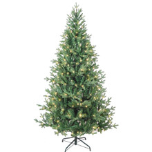 "This 6-ft Warm White LED Jackson Pine Tree from Kurt Adler is the perfect addition to your holiday decoration. Its green 6-ft design boasts 1692 tips and a 44"" girth. Pre-lit, this tree has a total of 250 warm white LED lights. Just add your favorite ornaments to complete the look."