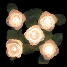 Kurt Adler UL 10-Light Clear/Iridescent Rose Light Set # UL1414C