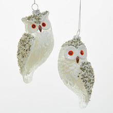 Kurt Adler 5.3in Glass Owl Ornaments, 2 Assorted #D2822