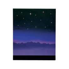Lemax Village Collection Starry Night Background #64078