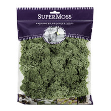 Super Moss Preserved Reindeer Moss in Moss Green  #23140SM
