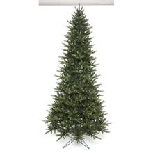 12' LED Slim Greenridge Tree with 1,750 Clear LED Lights #MTX52891L