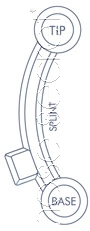 NoseSecret Splint Diagram