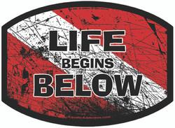 DIVE SIGNAL - LIFE BEGINS BELOW