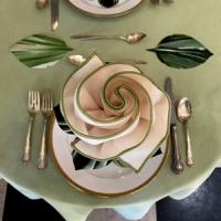 tablecloth-n-napkin-closeup-nice-200.jpeg