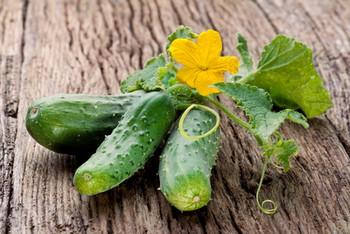 Bbw oil and cucumber