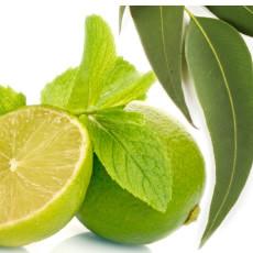 Pure Eucalyptus Spearmint Fragrance Oil