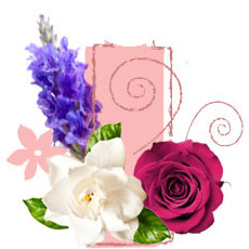 Pure Floral Fragrance Oil
