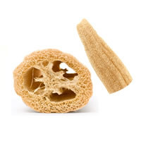 Buy Luffa /  Loofah (5 inch) pieces