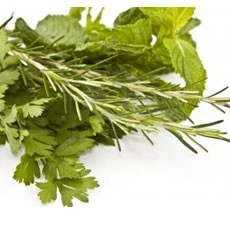Pure Rosemary Mint Fragrance Oil