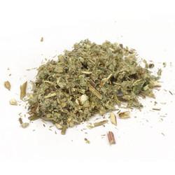 Mugwort Herb