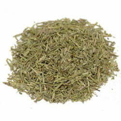 Shavegrass Herb