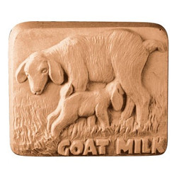 Goatmilk Bar Soap Mold