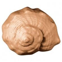 Conch Soap Mold