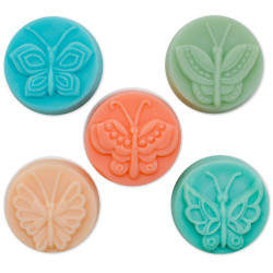 Guest 5 Butterfly Soap Mold