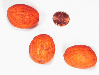 Amra Pods - Orange
